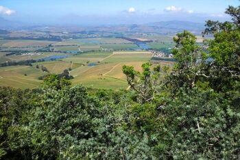 Klapmutskop - Stellenbosch winelands